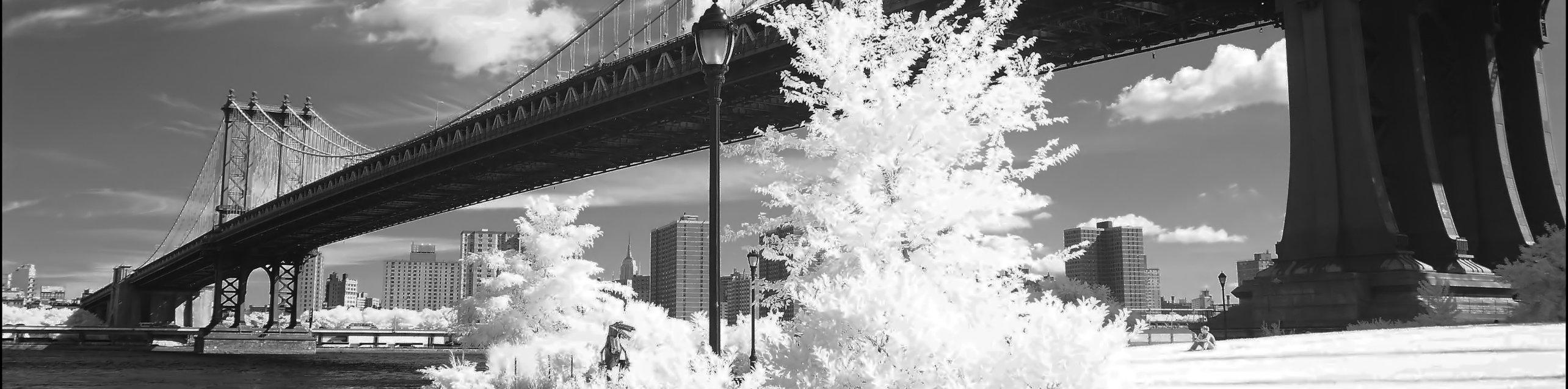 Cropped-Bridge-NY