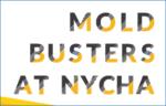 Mold Busters at NYCHA